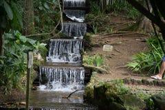 瀑布在里约热内卢 图库摄影