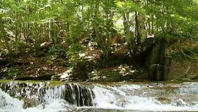 瀑布在高山森林里 股票录像
