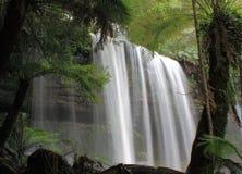 瀑布在登上领域国家公园塔斯马尼亚岛 免版税图库摄影
