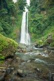 瀑布在巴厘岛密林 免版税库存照片