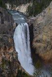 瀑布在黄石公园 库存照片