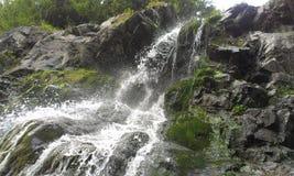 瀑布在Apuseni (Wasserfall在Apuseni) 免版税库存图片