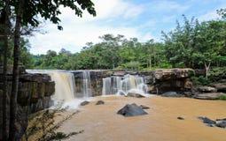 瀑布在dipterocarp森林里 免版税库存照片
