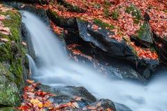 瀑布在Gatineau公园 免版税图库摄影