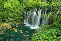 瀑布在Plitvice湖 免版税库存照片