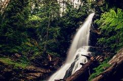 瀑布在Rohace (西部Tatras),斯洛伐克 免版税库存照片