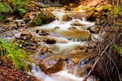 瀑布在Uvas县公园 免版税库存图片