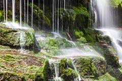 瀑布塔斯马尼亚岛 库存照片