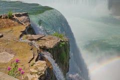 瀑布小和大与岩石和花 库存图片