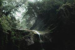 瀑布山峡谷索契自然黑暗的喜怒无常的倾吐的雨 免版税库存图片