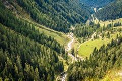 瀑布山风景 犹太教教士谷,特伦托自治省女低音阿迪杰,意大利 库存图片