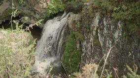 瀑布慢动作顶视图在复杂蜂蜜的瀑布的 股票录像