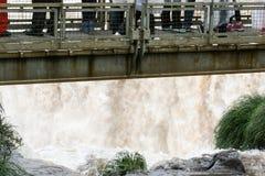 瀑布桥梁的游人 免版税库存图片