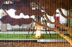 瀑布模型和背景树在公园塑造 库存图片