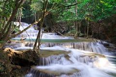 瀑布横向在深森林里 免版税库存图片