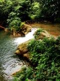 瀑布流程树岩石森林 图库摄影