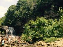 瀑布游泳区域 免版税图库摄影