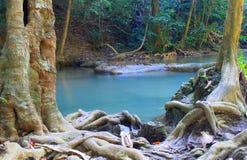 瀑布爱侣湾瀑布在美丽的森林里 库存图片