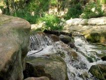 瀑布狂放的水在深森林里 免版税库存图片