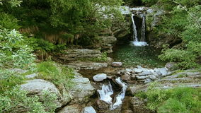 瀑布用纯净的水在森林里 影视素材
