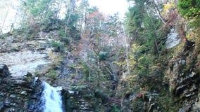 瀑布用落从峭壁的水 日晴朗森林的横向 影视素材