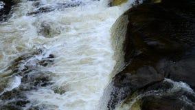 瀑布的水小河 股票录像