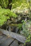 瀑布的特写镜头在日本庭院里 图库摄影