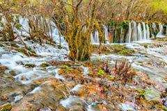 瀑布的秋天视图用在日出时间的纯净的水 库存照片
