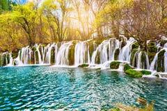 瀑布的秋天视图用在日出时间的纯净的水 库存图片