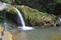 瀑布自然水深绿色 免版税库存照片