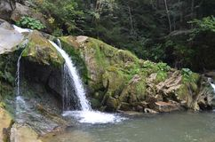 瀑布自然水深绿色 免版税库存图片