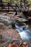 瀑布轻轻地流动在一座弯曲的桥梁在早期的秋天,画象下 免版税库存图片