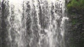 瀑布过去unusal玄武岩岩层在地方叫Dangar秋天,在Dorrigo附近, NSW,澳大利亚 股票视频