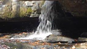 瀑布阿巴拉契亚山脉阵营小河国家公园 股票录像