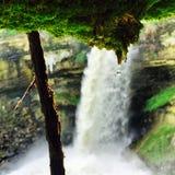 瀑布雨绿色秀丽明尼苏达 库存图片