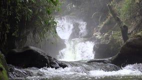 瀑布,小瀑布,自然 股票视频