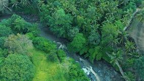 瀑布,岩石,森林,巴厘岛印度尼西亚4k旅行世界的山河美好的风景的空中英尺长度  股票视频
