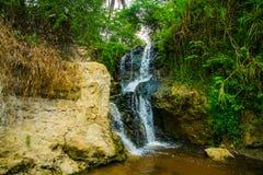 瀑布,岩石,绿色棕榈 神仙的小河(Suoi连队),美奈,越南 其中一个旅游胜地在美奈 美丽的mountai 库存照片