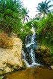 瀑布,岩石,绿色棕榈 神仙的小河(Suoi连队),美奈,越南 其中一个旅游胜地在美奈 美丽的mountai 免版税图库摄影