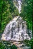 瀑布,摇篮Mountain湖圣克莱尔国家公园, Tas 澳大利亚 库存图片