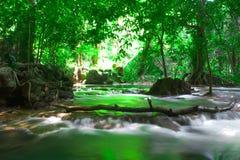 瀑布,普吉岛安达曼泰国室外摄影在雨密林林木的, 库存图片