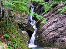 瀑布,水,自然,河,小河,小瀑布,森林,风景,绿色,岩石,山,石头,小河,秋天,春天,青苔, fal 免版税图库摄影