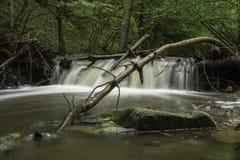 瀑布,河Pakra,克罗地亚 免版税库存照片