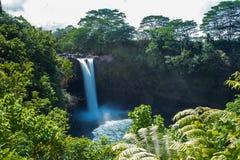 瀑布, Hilo,夏威夷 免版税库存照片
