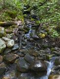 瀑布登上Washinton地区通过Ammonoosuc山沟足迹 免版税库存图片