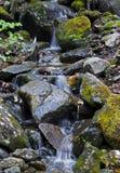 瀑布登上Washinton地区通过Ammonoosuc山沟足迹 免版税库存照片