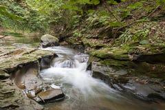 瀑布-北约克郡-英国 图库摄影