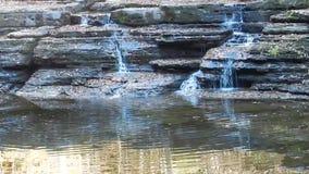 瀑布&反射的池塘阵营小河国家公园&森林 股票视频