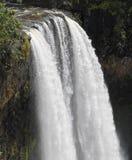 瀑布-纯流的水的夏威夷 库存图片