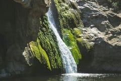 瀑布绿色青苔 免版税库存图片